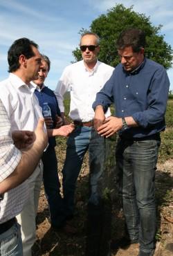 González Santín defende a importancia das políticas europeas para que a produción forestal da provincia sexa rendible economicamente